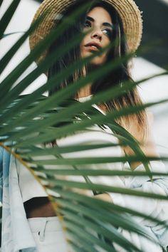 Palms # Australia