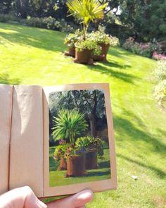 Anja Schäpertöns, gouache, Quick sketch in the garden Travel Journals, Quick Sketch, Gouache, Journaling, Sketches, Gardens, Urban, Watercolor, Fine Art