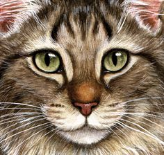 artist Debbie Cook ~ exquisite detail makes this look so real