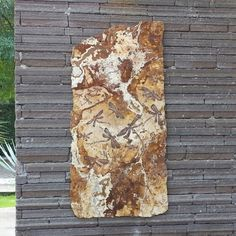 Grabado sobre mármol travertino oro viejo