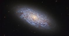 Hubble Displays a Dwarf Spiral Galaxy Follow @GalaxyCase if you love Image of the day by NASA #imageoftheday