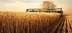 Improving Midwest Agriculture And The Environment