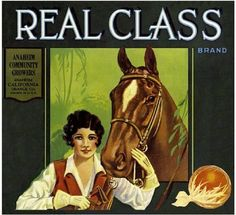 Anaheim Real Class Horse and Rider Orange Citrus Crate Label