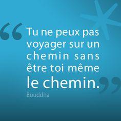 72 Meilleures Images Du Tableau Citations De Bouddha