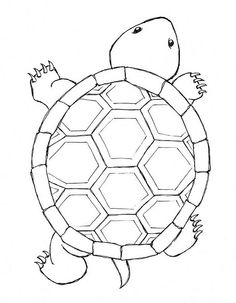 Turtle...think of all the different color you could use if you use this turtle for an appliqué !