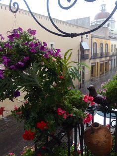 Rainy afternoon, at La Quinta de San Antonio, Puebla, Mexico