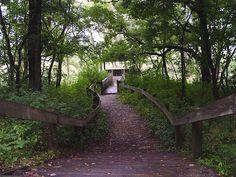 Moraine Hills State Park, McHenry IL by Maria J Aleman, via Flickr