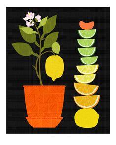 Christine Stalder Original - Citrus Sweet 1 - Limited Edition Print