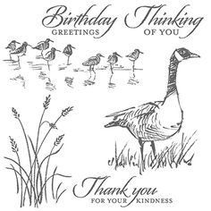This Stampin' Up! stamp set is called Wetlands-- a great combination of images and greetings.  Get yours for only $16.95.