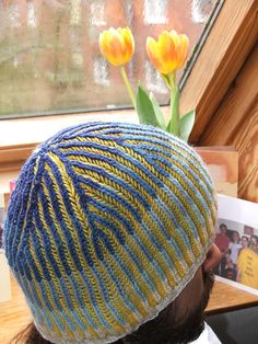 Man cap. Two color. Great project for left over yarn.  Ravelry: Multi-color brioche hat pattern by Kevin Norton
