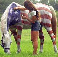 This would be cool for a fourth of July parade riding bareback!! if only I had a white horse...:(
