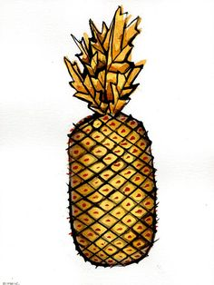Fruits - Drawings with ink on paper - Pineapple