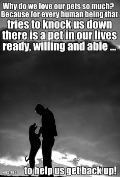 Why do we love our pets so much? Because for every human being that tries to knock us down there is a pet in our lives ready, willing and able to help us get back up!