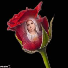 ✿╬╬✿╬╬✿╬╬✿╬╬✿╬╬ SÓ GIFs. ╬╬✿╬╬✿╬╬✿╬╬✿╬╬✿ Mary Jesus Mother, Blessed Mother Mary, Mary And Jesus, Blessed Virgin Mary, St Joseph Prayer, Jesus Scriptures, Love You Gif, St Therese Of Lisieux, Jesus Christ Images