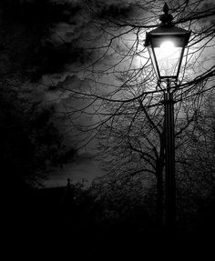 """I love the dark hours of my being. My mind deepens into them. There I can find, as in old letters, the days of my life, already lived, and held like a legend, and understood."""" ~Rainer Maria Rilke"""