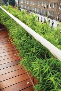 Landscaping roof terraces