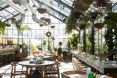 Greenhouse-Inspired Restaurant Opens on the Rooftop | California Home + Design