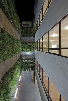 Prosperidad 49 , Cidade do México, México/ Taller Plan A ,© Marcos Betanzos