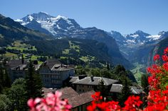 #view from room with Jungfrau view