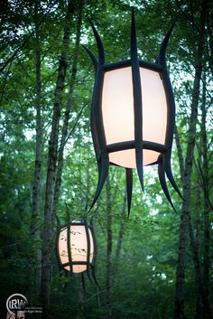 Lanterns on the path to the Woods Stage . . . Klean Kanteen will be back for 2013!