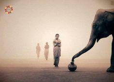 Nas grandes batalhas da vida, o primeiro passo para a vitória é o desejo de vencer. Mahatma Gandhi