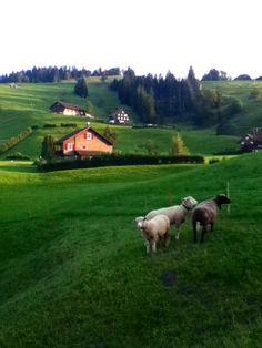 Einsiedeln, Schwyz, Switzerland