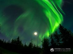 Northern Source Images The northern lights dance around the moon in the evening sky over North Pole, Alaska.