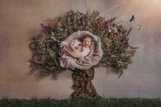 Baby sleeps during newborn photos with tree made out of fabric photographed by Massart Photography Maternity Photography, Art Photography, Wedding Photography, Newborn Posing, Newborn Photos, Studio Portraits, Baby Sleep, Family Photographer, Making Out