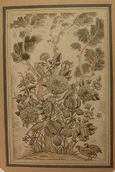 Rose and Nightingale (gul-u-bul-bul) Drawing