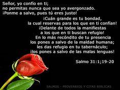 SALMO 31. 1, 19-20