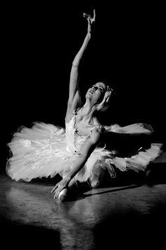 "Alina Somova in ""Dying Swan"", Mariinsky Theatre. Photography by Sasha Gouliaev. Black Swan Movie, Black Swan 2010, Ballet Poses, Ballet Dancers, Dancer Photography, White Photography, Street Dance, Swan Lake Ballet, Paris Opera Ballet"