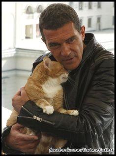 Antonio Banderas and huge orange kitty