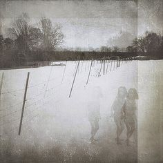 Melissa D Johnston - Ghosts and Shadows III - the three