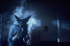 The Howling [1981] Best Werewolf Movies, Dog Soldiers, American Werewolf In London, Full Moon Rising, The Howling, Thriller, Storytelling, Creepy, Beast