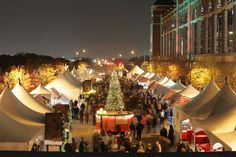 The Best Christmas Activities in the DFW area.