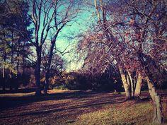 #invierno