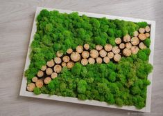Moss Wall Art, Moss Art, Wooden Wall Decor, Wooden Clock, Plant Art, Plant Decor, Logo Verde, Vertikal Garden, Moss Decor