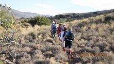 Karoo Erdvark Traill | Slackpacking in the Karoo | Guided Hiking Beaufort West - Dirty Boots Hiking Spots, Hiking Trails, Beaufort West, Trail Guide, Walkabout, The Great Outdoors, Wilderness, South Africa, Wildlife