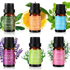 Purchase 6 Aromas rosemary pure essential oil for massage/aromatherapy anti aging anti wrinkles per bottle from Foxy Chic Boutique on OpenSky. Share and compare all Wellness. Essential Oil Pack, Essential Oils For Massage, 100 Pure Essential Oils, Therapeutic Grade Essential Oils, Tea Tree Essential Oil, Essential Oil Diffuser, Easential Oils, Perfume Oils, Organic Oil