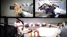 Warning to dog owners: Pet restraint crash tests show that most dog restraints fail! (no real pets were used)