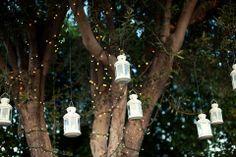 Lanternes suspendues à un arbre et guirlandes lumineuses enroulées aux branches pour la cérémonie laïque