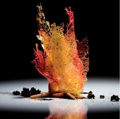 Ferran Adrià, Fire  Adrià's dishes are still life arrangements in themselves – created to look, on the plate, like abstract patterns, representational depictions (like Fire, above), or even like idealized paintings.