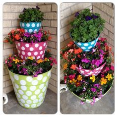 Image result for fun potted plant ideas
