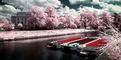 10 Best Examples Of Infrared Photography | Kitaro10