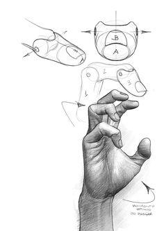 Esta imagem representa uma parte do model sheet do personagem Pumba da Disney. No início vemos uma interpretação geométrica e ela define o formato artístico do personagem. Esta é uma questão importante pois toda interpretação cartoon tem algum detalhe geométrico em sua construção. www.darlion.com.br