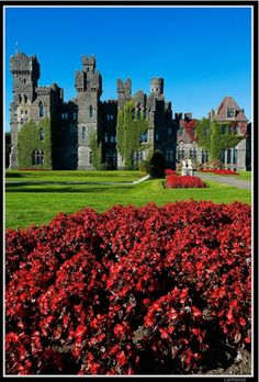 Ashford Castle, Ireland. Ashford Castle is a medieval castle turned five star luxury hotel near Cong on the Mayo/Galway border in Ireland, on the shores of Lough Corrib.