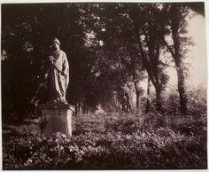 Le parc de #Sceaux (1910-1925), par Eugène #Atget (1857-1927).