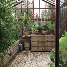 What Is Greenhouse Farming? What Is Greenhouse, Greenhouse Farming, Greenhouse Interiors, Backyard Greenhouse, Small Greenhouse, Greenhouse Plans, Greenhouse Wedding, Homemade Greenhouse, Pallet Greenhouse