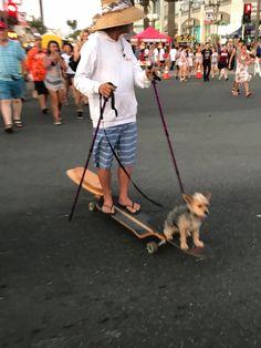 Huntington Beach California, Dogs, Animals, Animales, Animaux, Pet Dogs, Doggies, Animal, Animais