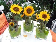 Deko mit Sonnenblumen - Bilder und Fotos